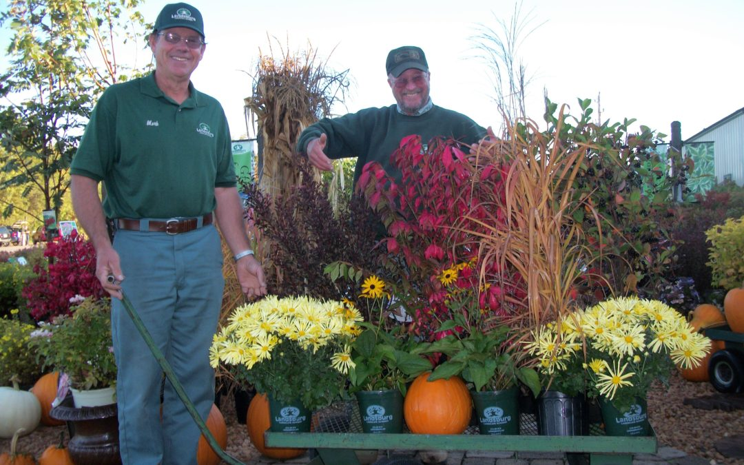 Don't pass up a great gardening season: Fall!