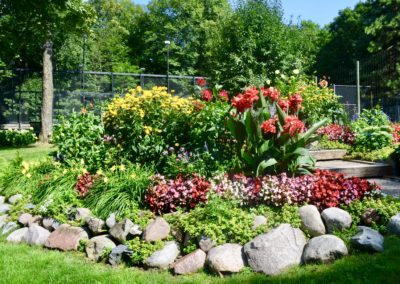 garden with annuals and perennials
